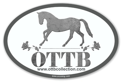 Off Track Thoroughbred Rescue